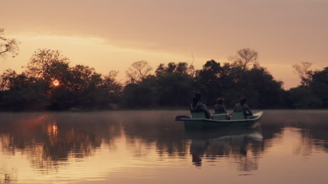 sunrise at rio claro - 湿地点の映像素材/bロール
