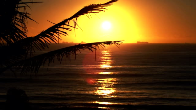 sunrise at the indian ocean - durban stock videos and b-roll footage