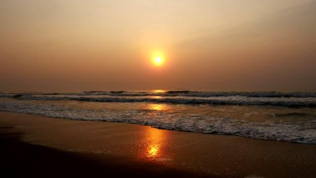 vídeos de stock, filmes e b-roll de nascer do sol na praia tropical. (câmera lenta) - árvore tropical
