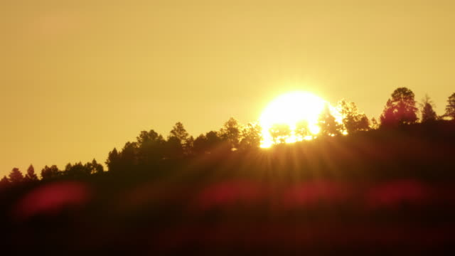 ws sunrise behind landscape / custer state park, south dakota, united states - カスター州立公園点の映像素材/bロール