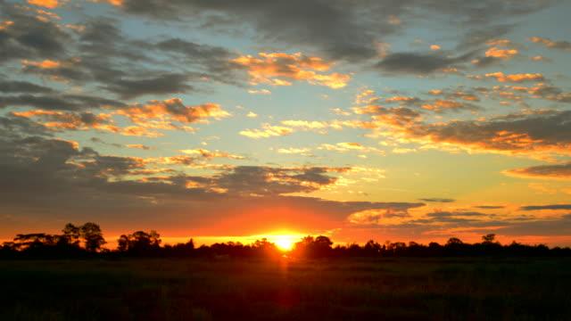 sunrise クラウド - grass点の映像素材/bロール