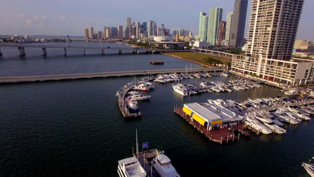 sunrise cruising to downtown miami - harbour stock videos & royalty-free footage