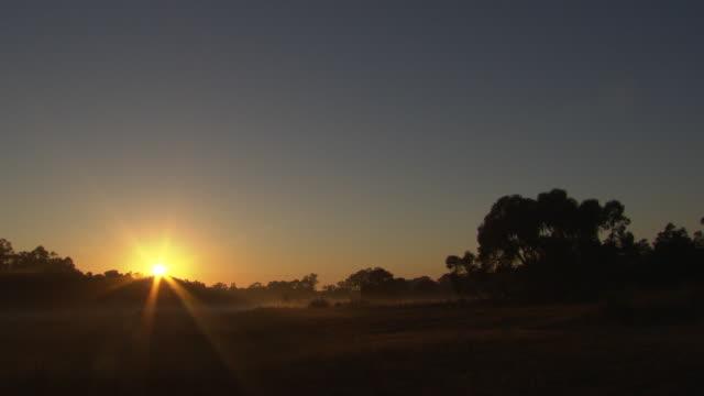 vídeos y material grabado en eventos de stock de sunrise distant shot of sun poking its head over a tree on horizon sun rays coming through the trees silhouette of trees and surrounding bush land - bush land