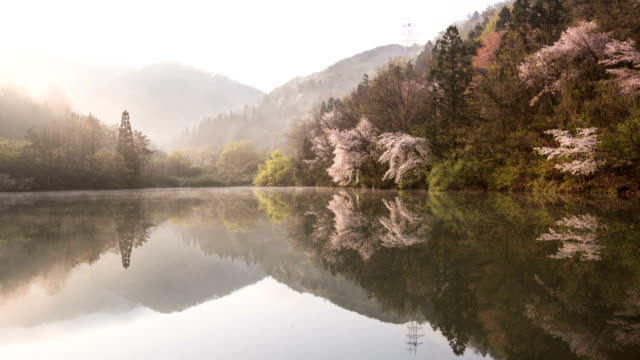 sunrise fog flowing over selyangji reservoir / hwasun-gun, jeollanam-do, south korea - jeollanam do stock videos & royalty-free footage