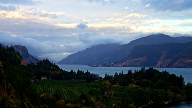 stockvideo's en b-roll-footage met sunrise from hood river columbia river gorge and farmland orchard winery cidery ruthton park 2 - pacific crest trail