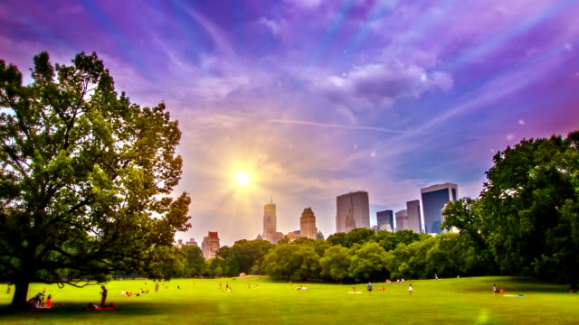 sunrise in cenrtral park - central park manhattan stock videos & royalty-free footage