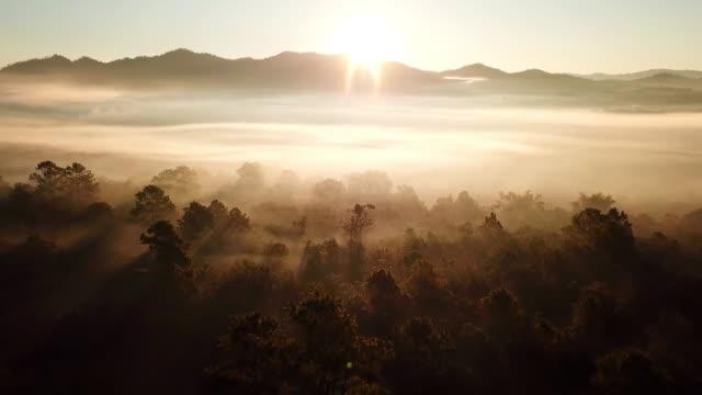 霧と山の太陽の光の空中ショットで朝の日の出 - 空気点の映像素材/bロール