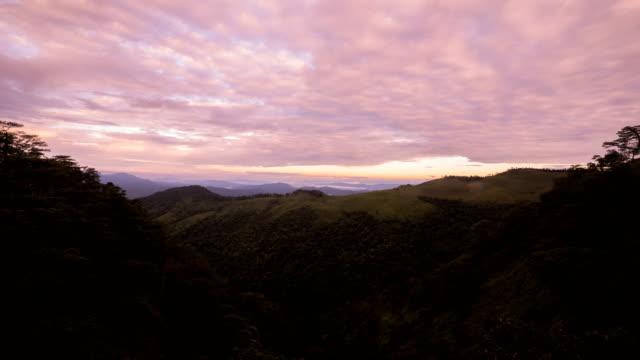 vídeos y material grabado en eventos de stock de amanecer en la montaña - pinar