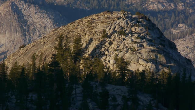 vídeos de stock, filmes e b-roll de tl sunrise light illuminates granite mountain peak in wilderness, yosemite national park, california - pinaceae