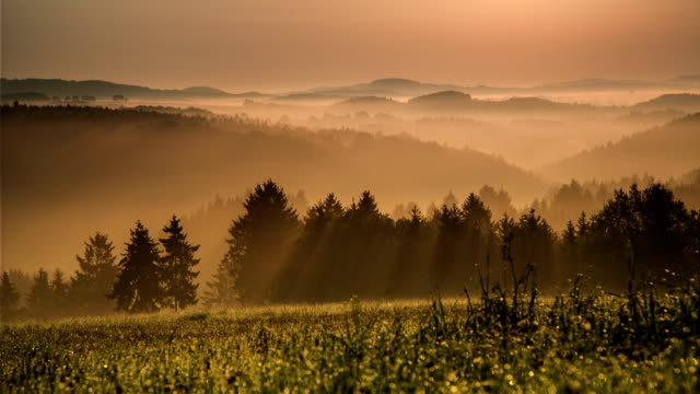kranich bis: sunrise misty berge - wiese stock-videos und b-roll-filmmaterial