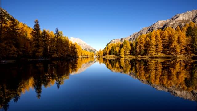 Sunrise on mountain lake with larch trees in autumn, Preda, Lake Palquognasee, Lai da Palquogna, Albula-Pass, Grisons, Switzerland, European Alps