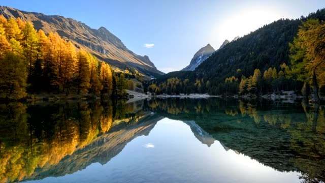 vídeos de stock, filmes e b-roll de sunrise on mountain lake with larch trees in autumn, preda, lake palquognasee, lai da palquogna, albula-pass, grisons, switzerland, european alps - alpes europeus