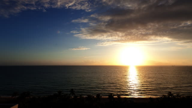 t/l sunrise over atlantic ocean with beach and palm trees in forground / miami, florida - sunrise dawn stock videos & royalty-free footage