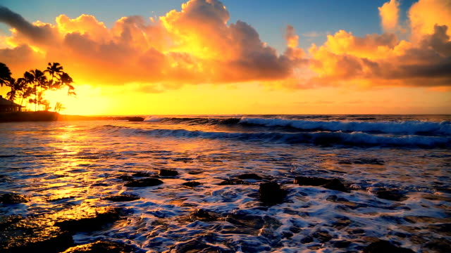 sunrise over beach in kauai, hawaii - kauai stock videos & royalty-free footage