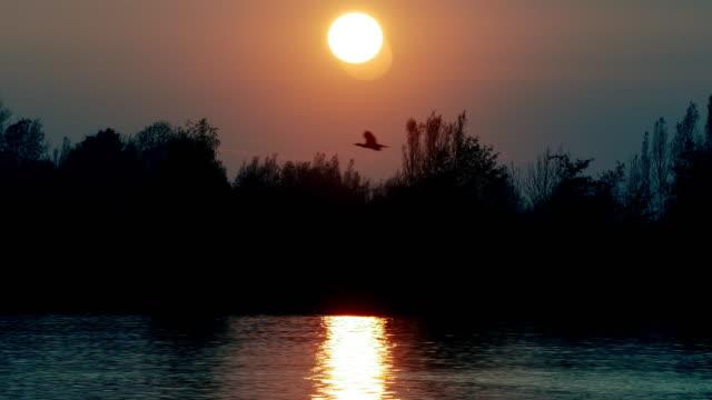 vidéos et rushes de lever de soleil au-dessus de la grande rivière - river danube