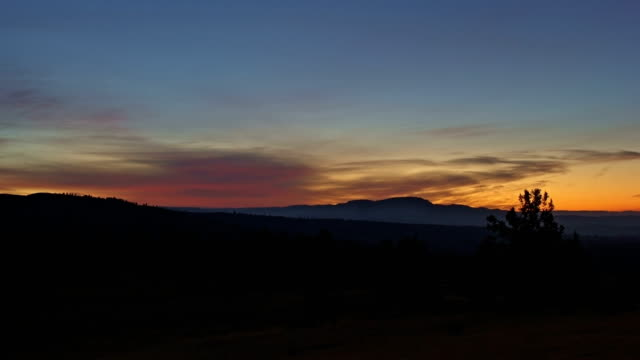 vídeos de stock, filmes e b-roll de sunrise over empty yellow desert fields and juniper trees on ranch - rancho