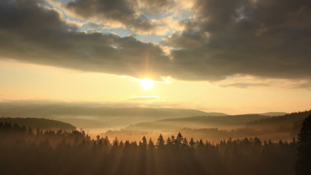 sunrise over forest, hills and fog