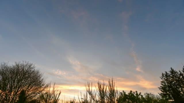 Sunrise over Huelgoat Woodland-Finistere