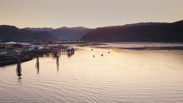 sunrise over oregon fishing village - aerial shot - oregon coast stock videos & royalty-free footage