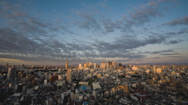 ws t/l sunrise over shinjuku business, shopping and entertainment district / tokyo, japan - sunrise dawn stock-videos und b-roll-filmmaterial