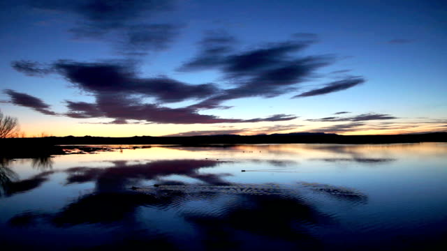 ws sunrise over still pond at bosque del apache national wildlife refuge, new mexico, usa - bosque del apache national wildlife reserve stock videos & royalty-free footage