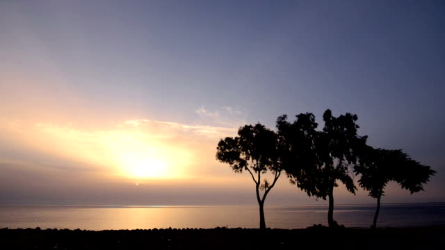sunrise over the sea - ozgurdonmaz stock videos and b-roll footage