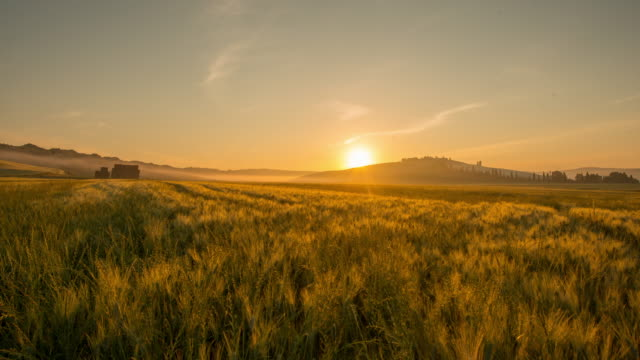 t/l 8k sunrise over the tuscany countryside - farmhouse stock videos & royalty-free footage