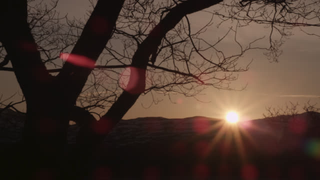 sunrise over winter woodland, cumbria, england - winter stock videos & royalty-free footage