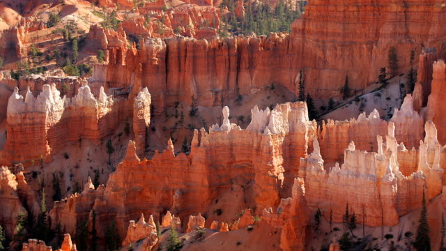 zo, ws, sunrise point,  bryce canyon national park, utah, usa - utah stock videos & royalty-free footage