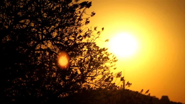 w/s sunrise/ pretoria/ south africa - pretoria stock videos & royalty-free footage