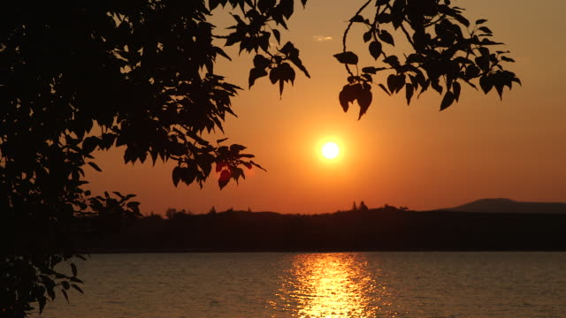 sunrise silhouette and tree by river. - wiese stock videos & royalty-free footage