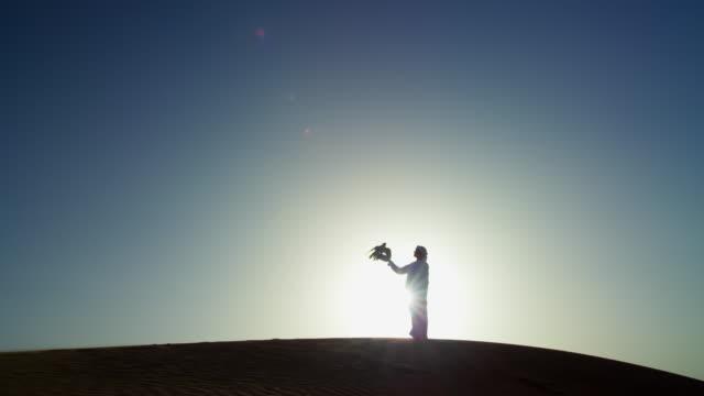 sunrise silhouette arab falconer with bird of prey - qatar stock videos & royalty-free footage