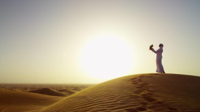 sunrise silhouette arab falconer with bird of prey - qatar bildbanksvideor och videomaterial från bakom kulisserna