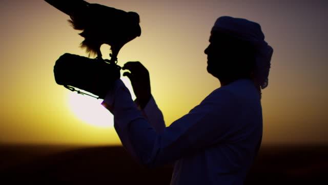 sunrise silhouette arab falconer with bird of prey - headdress stock videos & royalty-free footage