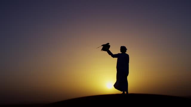 vídeos de stock, filmes e b-roll de sunrise silhouette arabic falconer with bird of prey - local de filmagem não americano