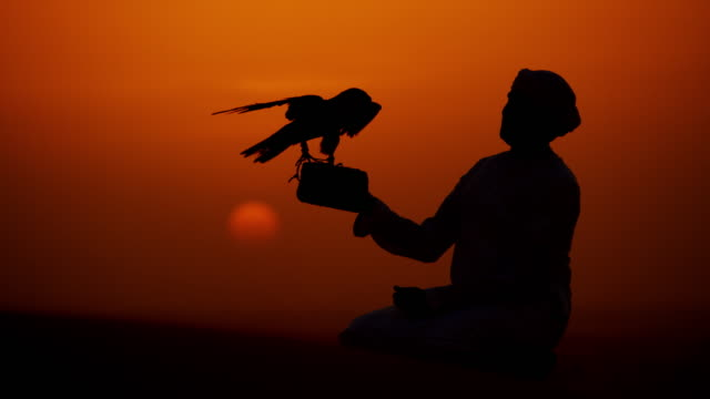 Sunrise silhouette Arabic falconer with bird of prey