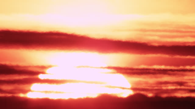 "stockvideo's en b-roll-footage met sunrise through shimmering heat haze, worcestershire, england - ""bbc natural history"""