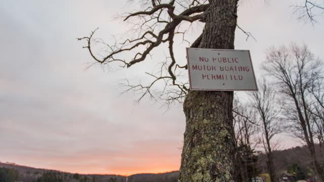 sunrise tree rise - 英字点の映像素材/bロール