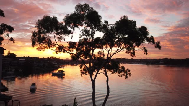 sunrise - river stock videos & royalty-free footage