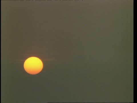 T/L  sunrise
