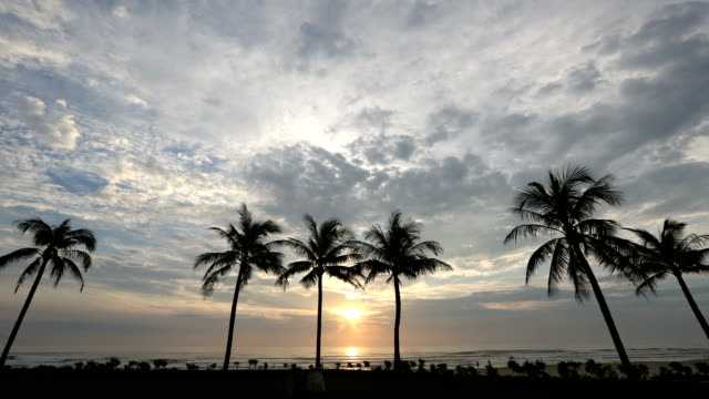 sunrise view of palm trees on the beach of danang - ダナン点の映像素材/bロール