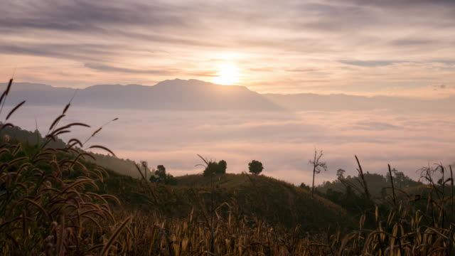 sunrise with fog and moving mist on the mountain , time-lapse - roll over stock videos and b-roll footage