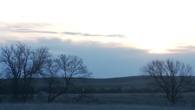ws t/l sunrise with moving clouds and bare trees / kyle, south dakota, united states - south dakota stock-videos und b-roll-filmmaterial