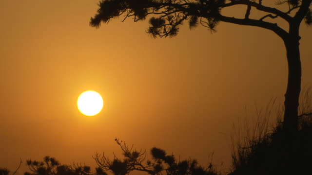 Sunrising view of Daeheungsa in Haenamgun