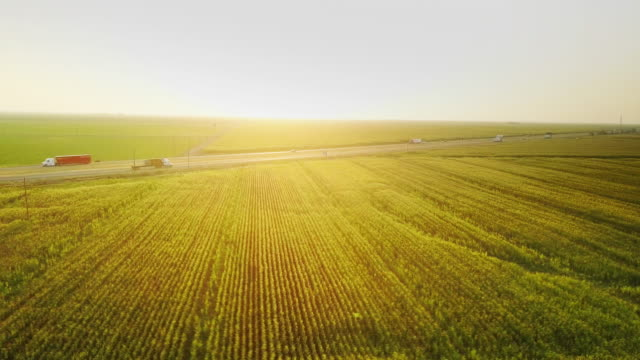 Sunset Aerial Shot of I-5 Cutting Across Central Valley Farmland