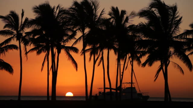 sunset against trees and boat over water - hawaii islands stock videos and b-roll footage