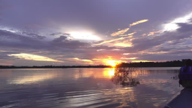 sunset at amazon river - ecuador stock videos & royalty-free footage