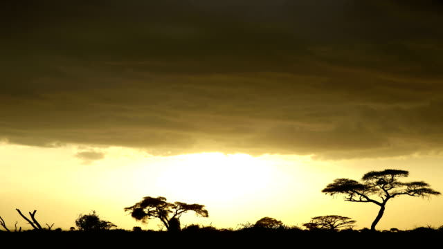 Sunset at Amboseli