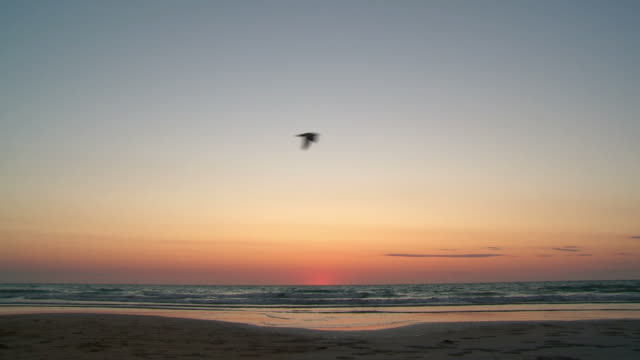 HD: Sunset at Cable Beach