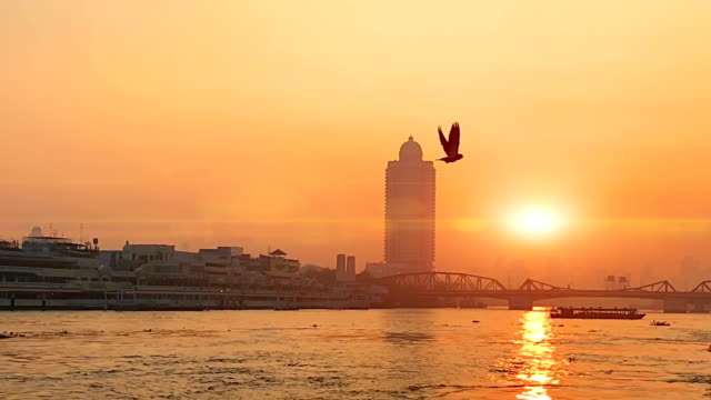 sunset at chao phraya river - elevated train stock videos and b-roll footage